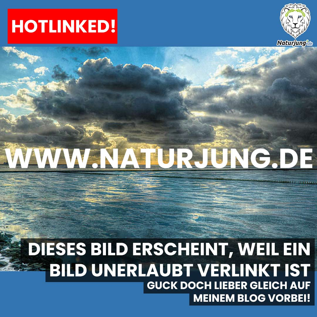 der_naturjung Instagram Account