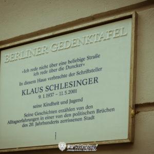 Klaus Schlesingers Zitat